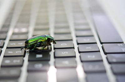 Bug Sweep